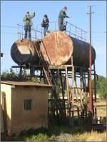 Sonstige/5435/ein-ausgezeichneter-fotostandpunkt-vor-dem-dampflokdepot Ein ausgezeichneter Fotostandpunkt vor dem Dampflokdepot in Asmara. Das Foto wurde von meinem Reisebegleiter Peter aus dem Zug heraus geschossen. (31.10.2008)